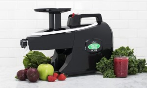 extracteur de jus horizontal Greenstar Elite 5010