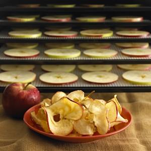chips de pommes à la cannelle au déshydrateur