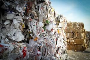 Journée Mondiale du recyclage : l'importance de recycler !
